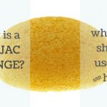 what is a konjac sponge