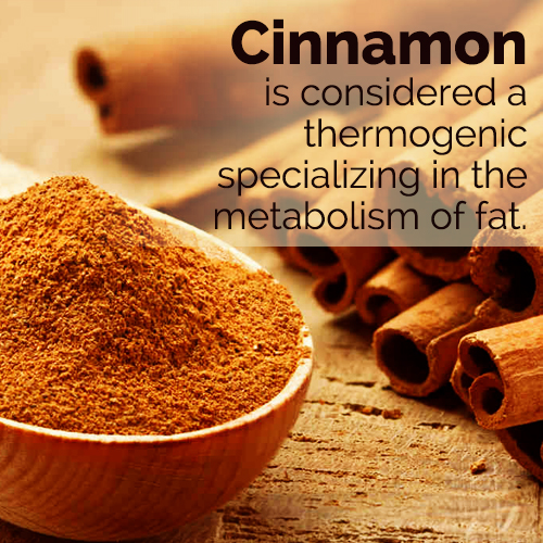 what are the benefits of cinnamon