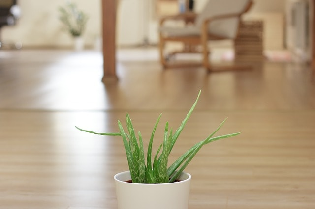 how to clean indoor air