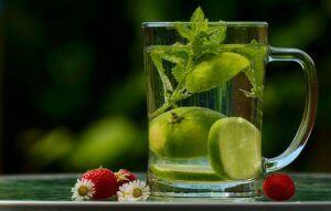 medicinal herbal plants