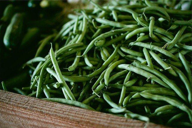 food sources of vitamin k