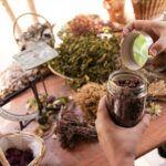 best medicinal herbs