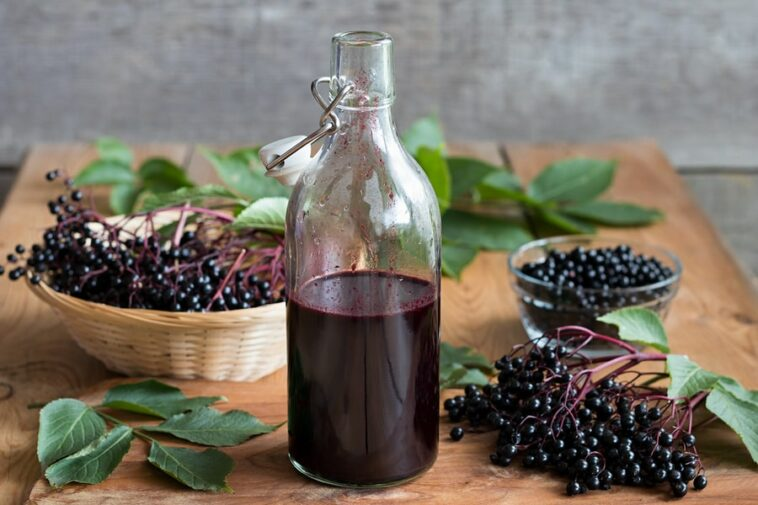 the health benefits of elderberry syrup