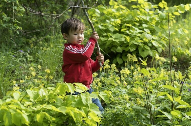 boost children immunity letting them play in dirt